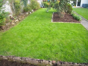 longwoodlawncare lawn care
