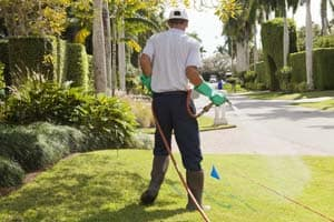 Winter Springs Lawn Care